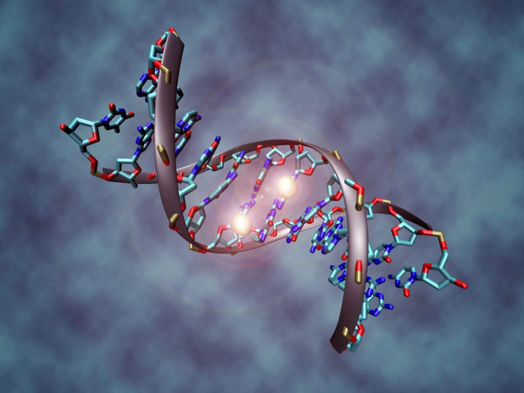 Words and Their Effect on our DNA