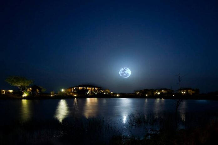 Full Moon Night : High Energy For Meditation and Healing